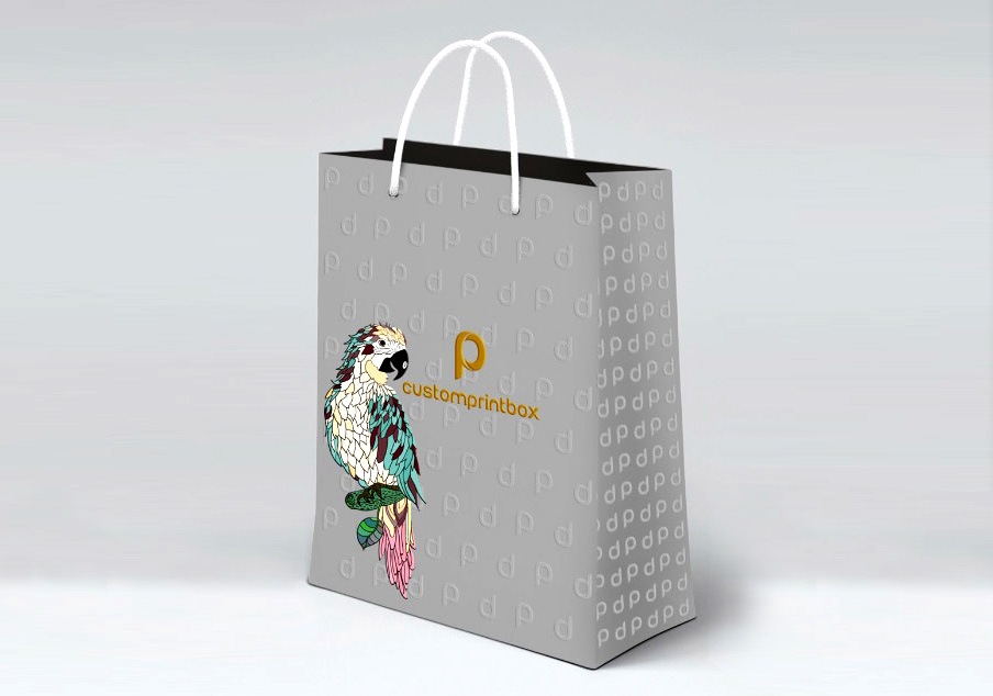 customprintbox-paper-shopping-bag-gift-bag-03 & Top 5 Reasons You Should Add Custom Printing to Your Dynamic Size ...